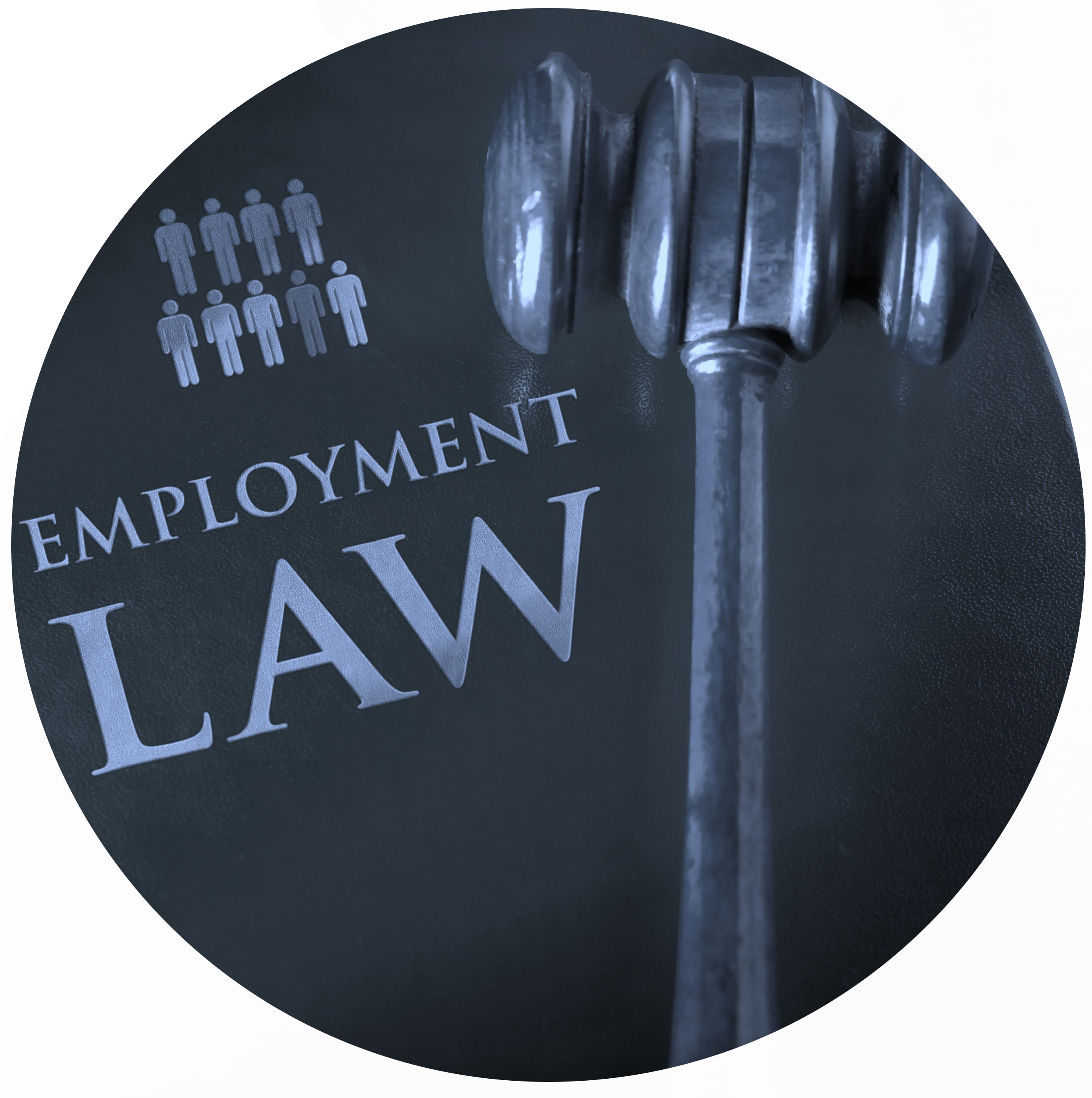 Employee Compensation Case Study - Adelaide Legal